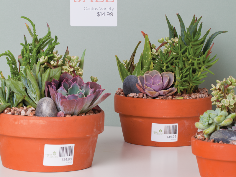 Plant labels with barcodes
