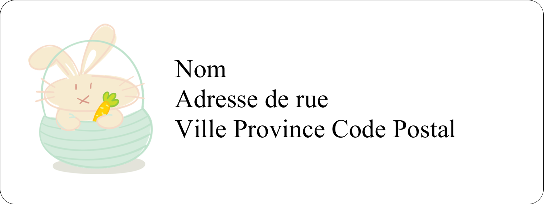 """⅔"""" x 1¾"""" Étiquettes D'Adresse - Panier de lapin"""