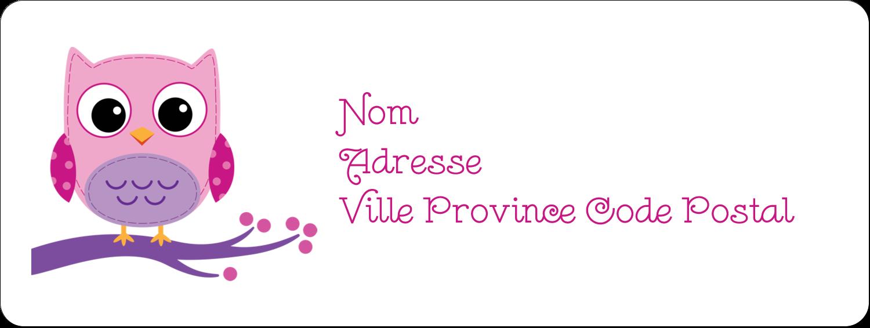 """⅔"""" x 1¾"""" Étiquettes D'Adresse - Chouette rose"""