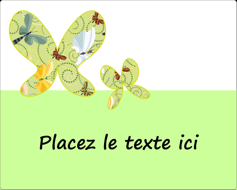 """3"""" x 3¾"""" Étiquettes rectangulaires - Deux papillons"""