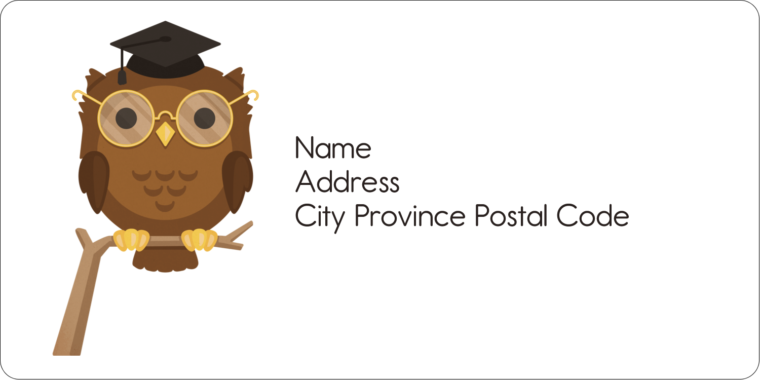 "2"" x 4"" Shipping Label - Academic Owl Graduation"