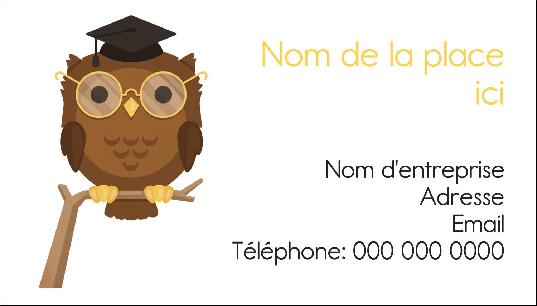 """3"""" x 5"""" Cartes Pour Le Bureau - Hibou et diplôme"""