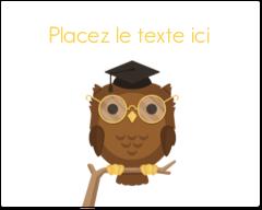 """2"""" Diameter Étiquettes rondes gaufrées - Hibou et diplôme"""