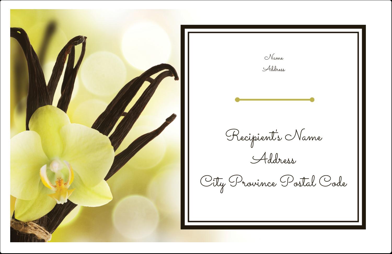 "5½"" x 8½"" Shipping Label - Vanilla Bean Flower"