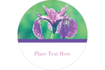Add eloquent floral beauty to custom projects using pre-designed Purple Iris templates.