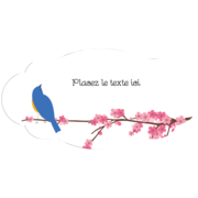 Cerisiers en fleur