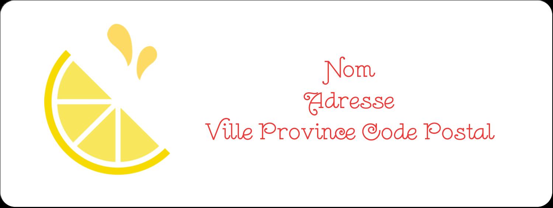 """1½"""" x 4"""" Étiquettes D'Adresse - Fruits roses"""
