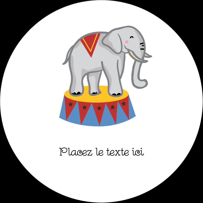 """3"""" x 2¼"""" Étiquettes arrondies - Anniversaire au cirque"""