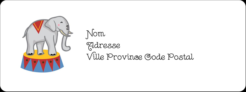 """1½"""" x 4"""" Étiquettes D'Adresse - Anniversaire au cirque"""