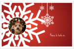 Les gabarits Flocons de neige en feutre pour votre prochain projet des Fêtes Cartes de souhaits pliées en deux - gabarit prédéfini. <br/>Utilisez notre logiciel Avery Design & Print Online pour personnaliser facilement la conception.