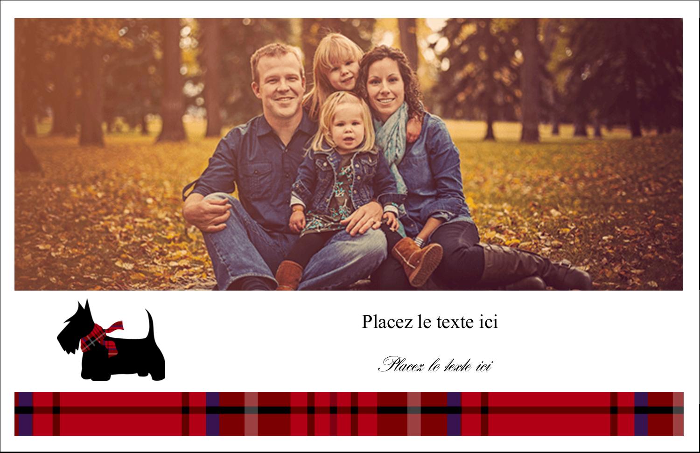 """5½"""" x 8½"""" Cartes de souhaits pliées en deux - Terrier écossais"""