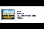 Caisse d'oranges Étiquettes d'adresse - gabarit prédéfini. <br/>Utilisez notre logiciel Avery Design & Print Online pour personnaliser facilement la conception.