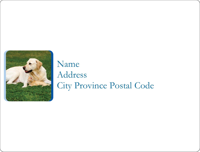 """2⅝"""" x 2"""" ID Label - Animals Pet Care"""