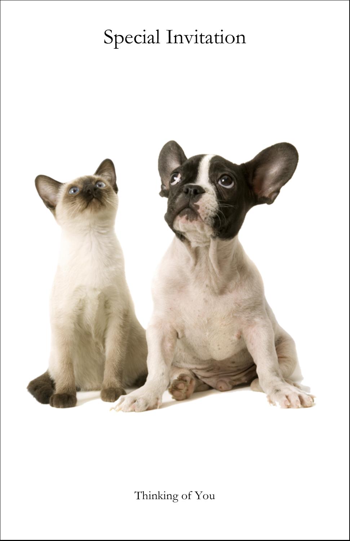 "5"" x 8½"" Half Fold Card - Animals Pet Care"