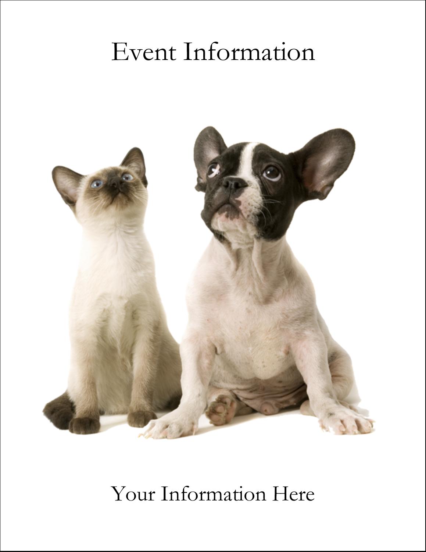 "4¼"" x 5½"" Postcard - Animals Pet Care"