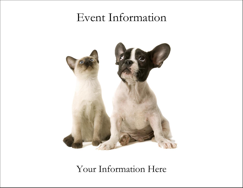 "5½"" x 4¼"" Postcard - Animals Pet Care"