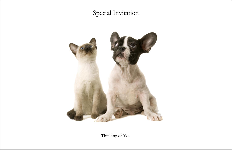 "5½"" x 8½"" Greeting Card - Animals Pet Care"