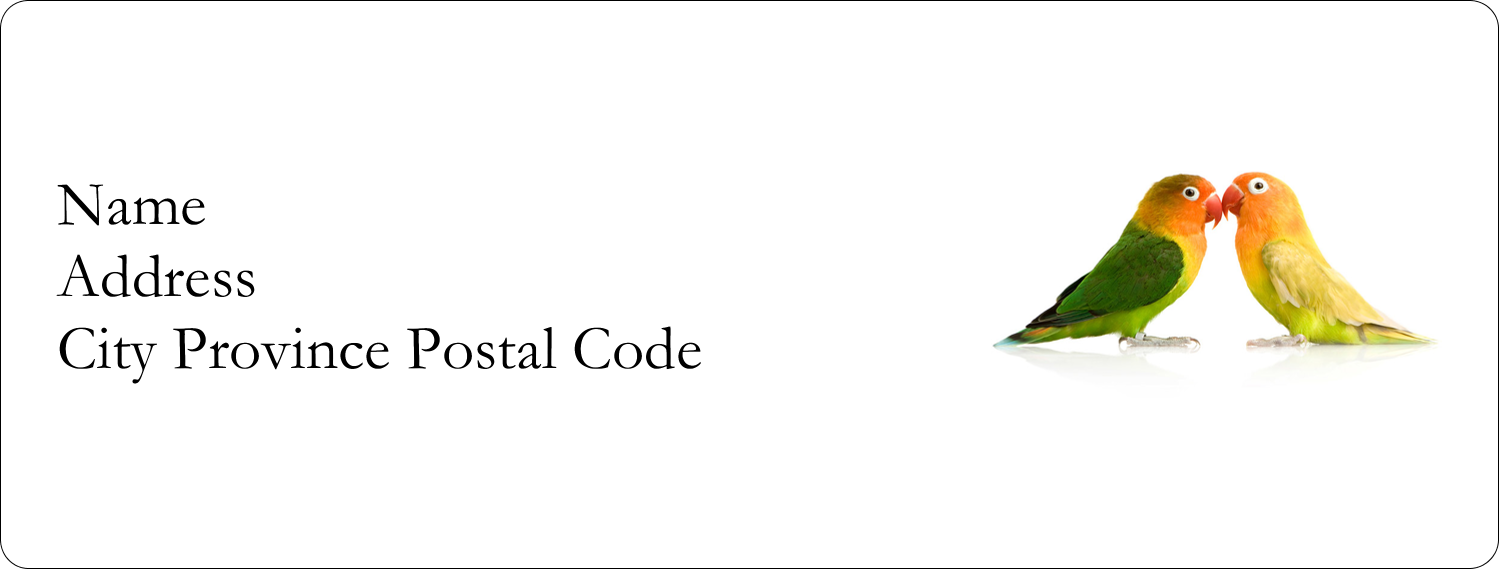 "1"" x 2⅝"" Address Label - Birds in Nature"