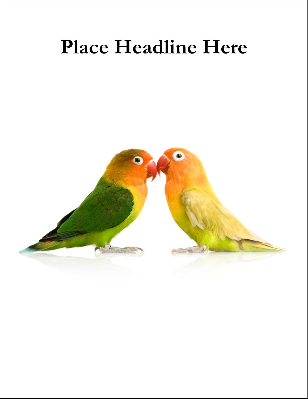 "8½"" x 11"" T-Shirt-Tranfers - Birds in Nature"