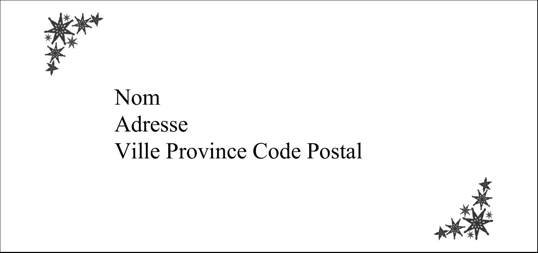 """4¼"""" x 2"""" Étiquettes Pour Copieurs - Angle étoilé"""
