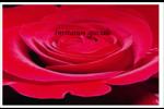 Rose rouge Cartes de souhaits pliées en deux - gabarit prédéfini. <br/>Utilisez notre logiciel Avery Design & Print Online pour personnaliser facilement la conception.