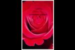 Rose rouge Cartes Et Articles D'Artisanat Imprimables - gabarit prédéfini. <br/>Utilisez notre logiciel Avery Design & Print Online pour personnaliser facilement la conception.