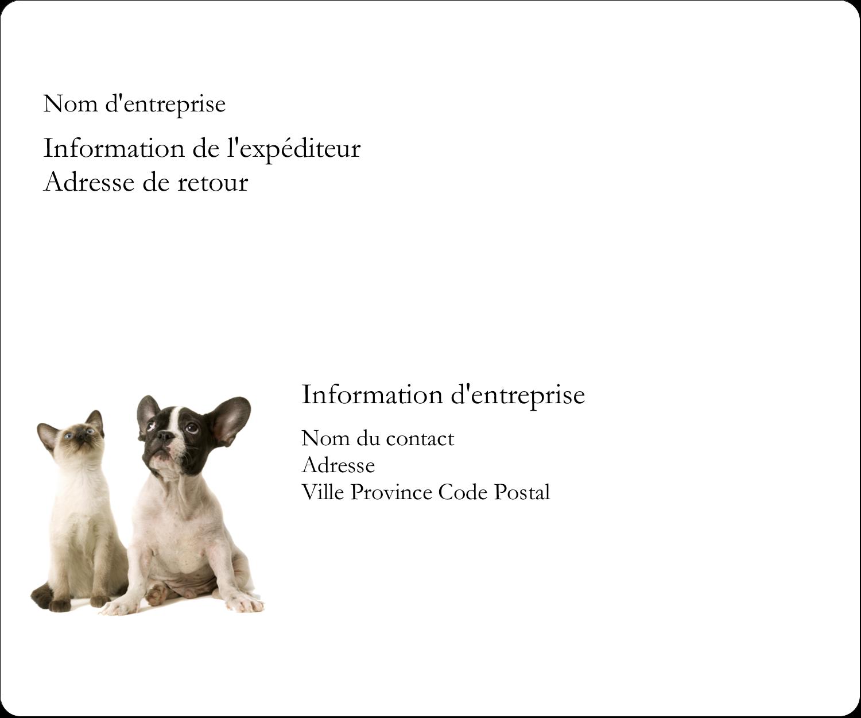 """4"""" x 3⅓"""" Étiquettes D'Identification - Adorables animaux de compagnie"""