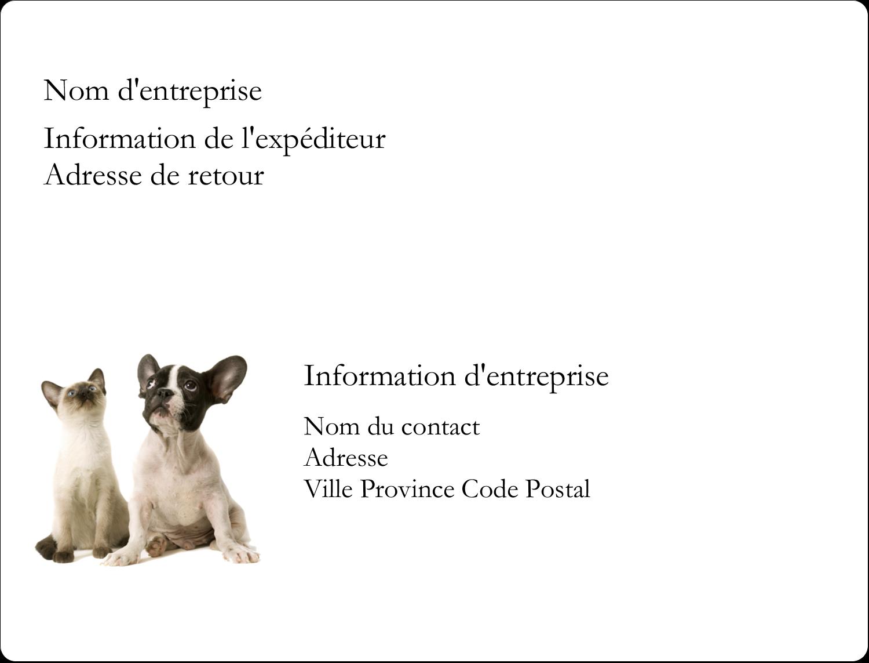 """2⅝"""" x 2"""" Étiquettes D'Identification - Adorables animaux de compagnie"""