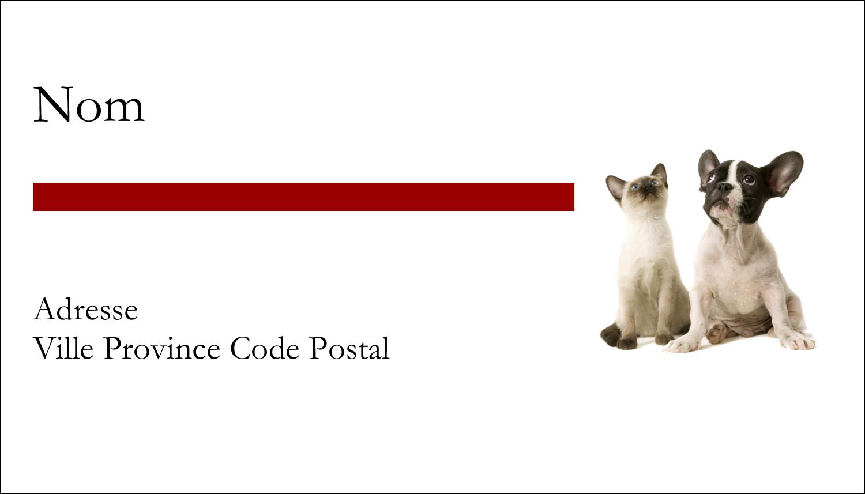 """4"""" x 2"""" Étiquettes Polyvalentes - Adorables animaux de compagnie"""