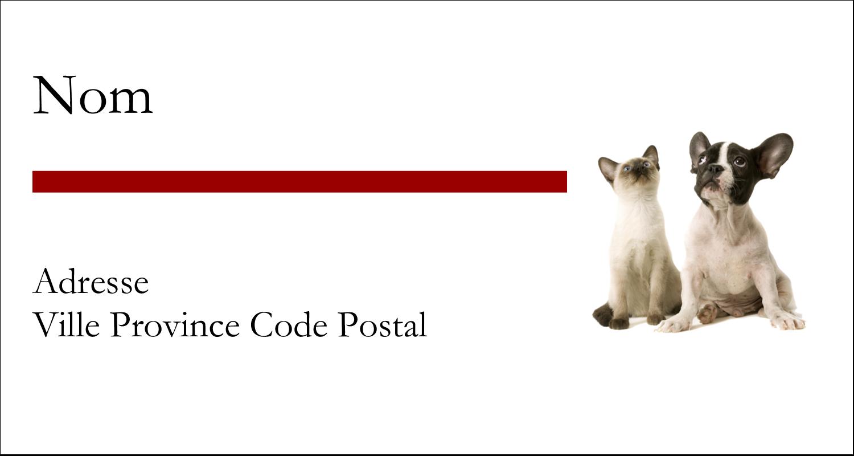 """2-13/16"""" x 1½"""" Étiquettes Pour Copieurs - Adorables animaux de compagnie"""