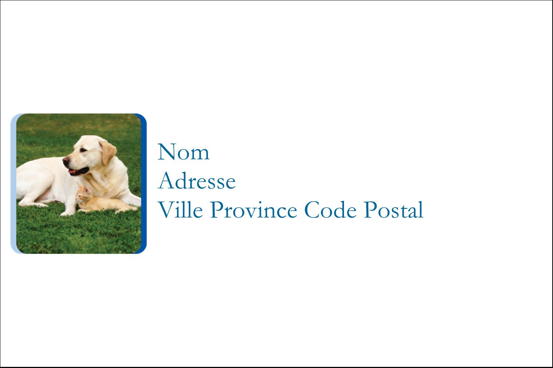 TBD Étiquettes Polyvalentes - gabarit prédéfini. <br/>Utilisez notre logiciel Avery Design & Print Online pour personnaliser facilement la conception.