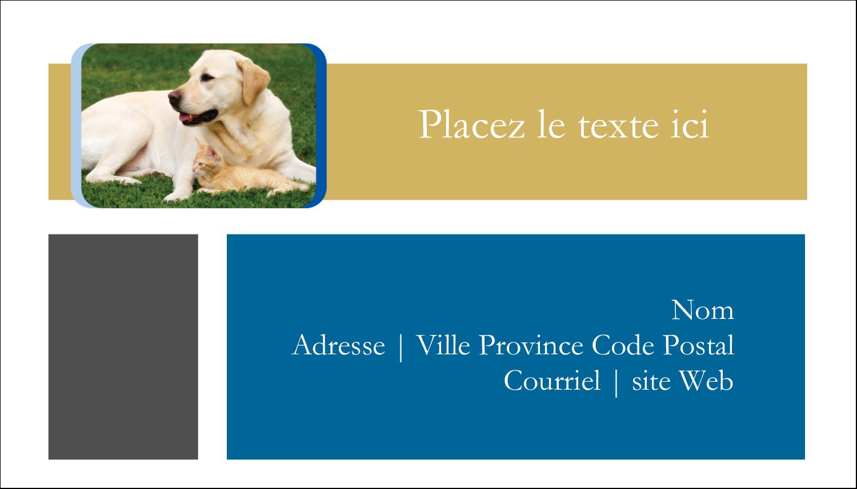 """2"""" x 3½"""" Carte d'affaire - Soins aux animaux de compagnie"""