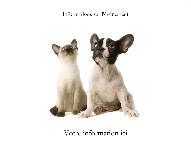 """5½"""" x 4¼"""" Carte Postale - Adorables animaux de compagnie"""