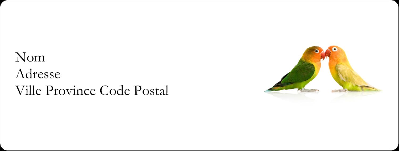 """1"""" x 4"""" Étiquettes d'adresse - Oiseaux en nature"""
