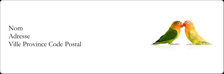 """8½"""" x 11"""" Intercalaires / Onglets - Oiseaux en nature"""