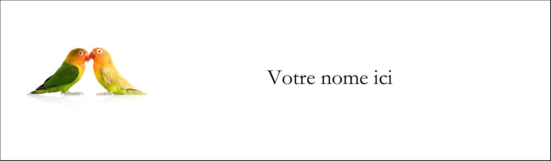 """3½"""" x 11"""" Affichette - Oiseaux en nature"""