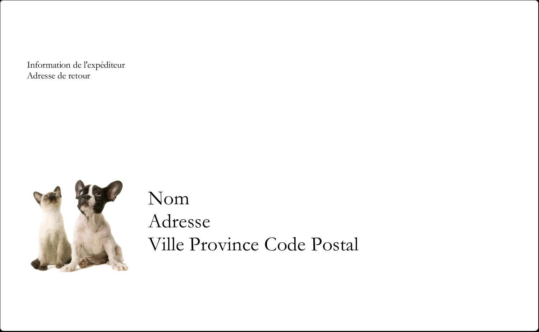 """8⅛"""" x 5"""" Étiquettes d'expéditions - Adorables animaux de compagnie"""