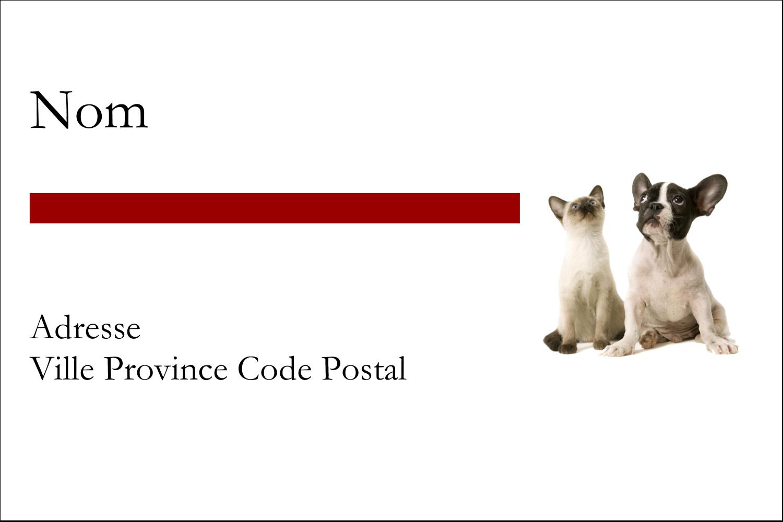 """3"""" x 2"""" Étiquettes Polyvalentes - Adorables animaux de compagnie"""