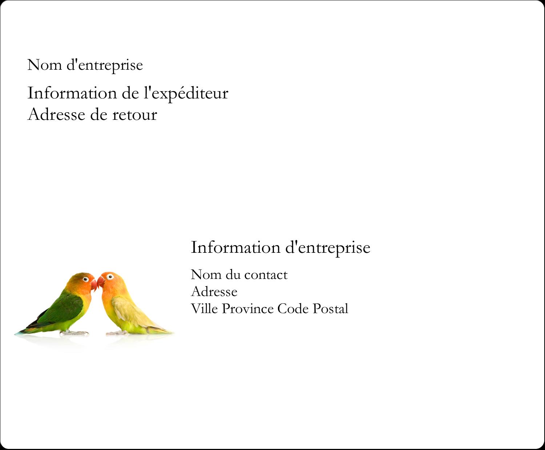 """3⅓"""" x 4"""" Étiquettes d'expédition - Oiseaux en nature"""