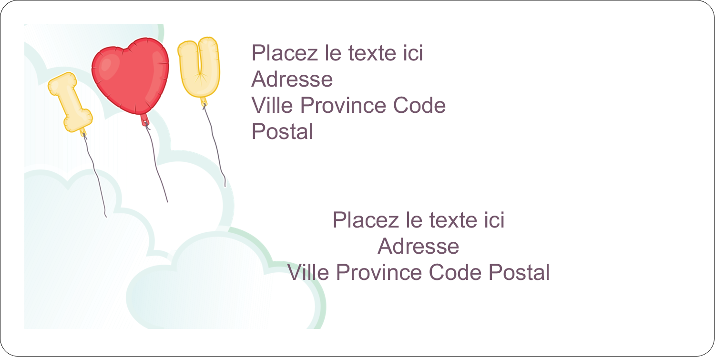 """3-7/16"""" x ⅔"""" Étiquettes de classement écologiques - Ballon d'amour de Saint-Valentin"""