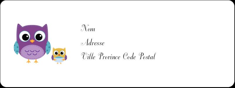 """⅔"""" x 1¾"""" Étiquettes D'Adresse - Bébé hibou"""