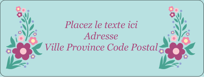 """⅔"""" x 1¾"""" Étiquettes D'Adresse - Princesses"""