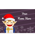 Santa has many helpers but his favourite helper is Henry the Holiday Elf!