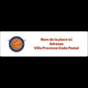Insigne de basketball