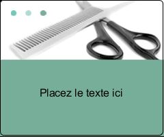 """3⅓"""" x 4"""" Étiquettes d'expédition - Soins des cheveux"""