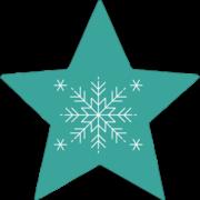 Modern Snowflake Teal